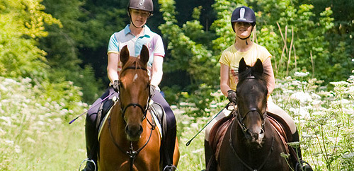 Ride Yorkshire - Horse Riding Holidays, York