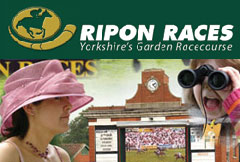 Ripon Races, Ripon