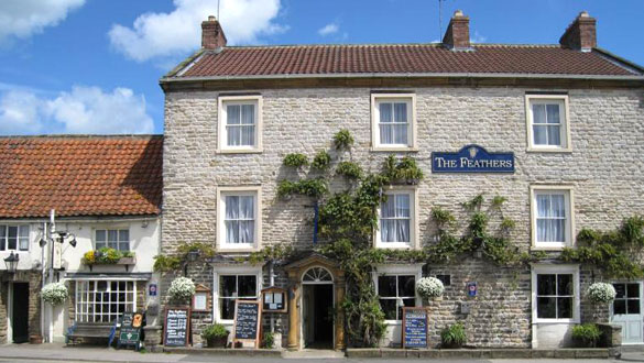 The feathers helmsley
