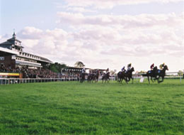 Thirsk racecourse north yorkshire