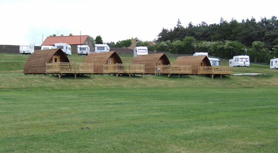 Grouse hill caravan park whitby wigwams