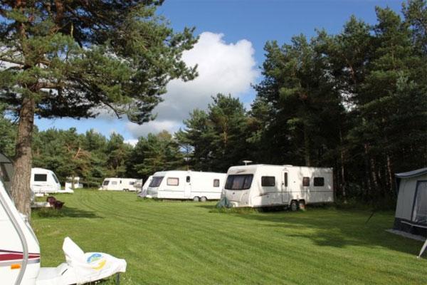 Ladycross Plantation Caravan Park Campsite Whitby