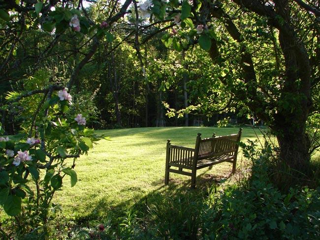 Ingleby manor garden