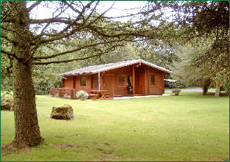 Larch lodge